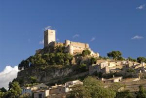 Castillo Biar